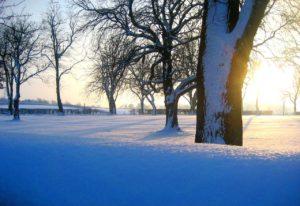 みんなコロナで苦しいからこそ、豪雪に苦しんでいる地域を応援しませんか?