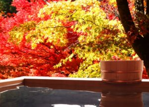 【オーダーメード・プチ動画】温泉旅行に誘う#お誕生日祝いの#プチ動画はいかがですか?「絆のプチ動画#10」